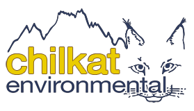Chilkat Environmental